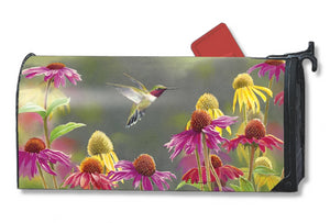 MailWrap with hummingbird hovering among a patch of pink and yellow coneflowers