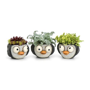 Penguin Babies Planters, Set of 3 Assorted