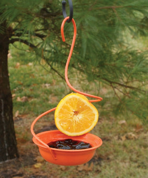 Orange Metal Oriole Feeder filled with grape jelly and orange halves