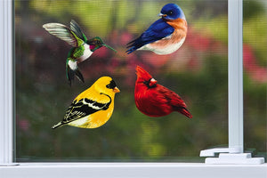 Realistic Bird Screen Door Savers displayed on a screen in a window (in photo there is a hummingbird, bluebird, goldfinch and cardinal)