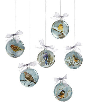 Glass Christmas Bird Design Disc Ornaments - 6 Assorted Bird Designs