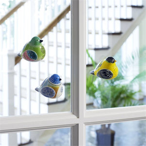 Bird Song Collection Screen Magnets displayed on glass window pane