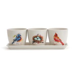 Artist Dean Crouser Pretty Birds Planter Set includes three off-white, minimalist planter pots in a simple, off-white drip tray. Each pot is given an eye-catching look with a different songbird design, including a bluebird, bird's nest, and cardinal