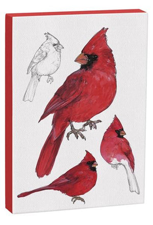 Male Cardinal 5x7 inch Canvas displaying sketched & colorfully illustrated Male Cardinals