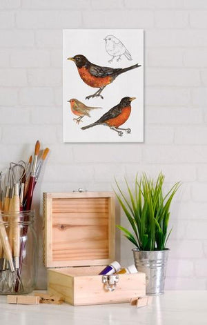 American Robin 5x7 Canvas Wall Art