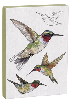 Ruby-throated Hummingbird 5x7 inch Canvas displaying sketched & colorfully illustrated Ruby-throated Hummingbirds