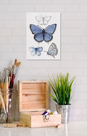 Eastern Tailed-Blue Butterfly 5x7 Canvas Wall Art