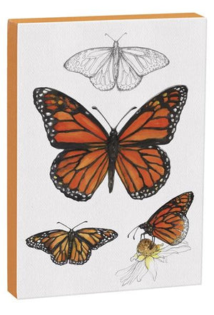 Monarch Butterfly 5x7 inch Canvas displaying sketched & colorfully illustrated Monarch Butterflies