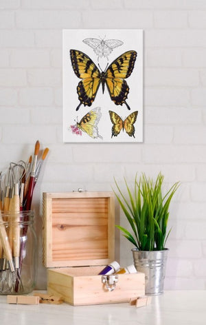 Tiger Swallowtail Butterfly 5x7 Canvas Wall Art