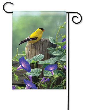 Goldfinch on Morning Glory Perch Garden Flag