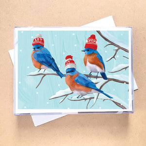 Three Bluebirds Greeting Card Holiday Boxed Set - 15 Cards