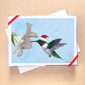 Holiday Hummingbird Greeting Card Holiday Boxed Set - 15 Cards