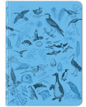 Front Cover of Birds Hardcover Notebook with Dot Grid Paper