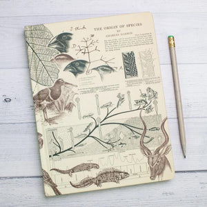 Evolution Hardcover Notebook with Dot Grid Paper