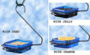 Hanging Jelly & Mealworm feeder with blue dish