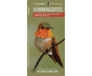 Hummingbirds of North America Folding Pocket Guide