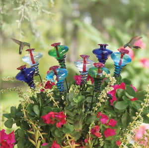 Mini Blossom Hummingbird Feeder on Stake shown in assorted colors