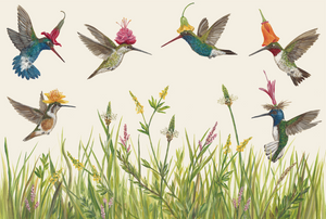 Artwork for Meadow Buzz Hummingbirds Placemats