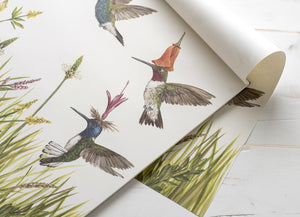 Meadow Buzz Hummingbirds Paper Placemats