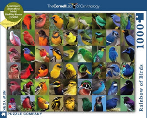 Rainbow of Birds Puzzle with Poster