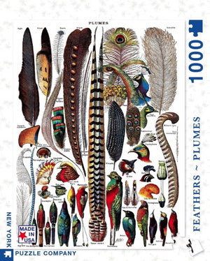 Bird Feathers & Plumes 1000 piece Puzzle