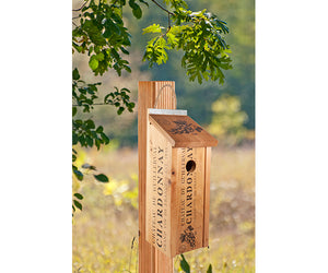 Novelty Wine Crate Bluebird House shown hanging on post outside