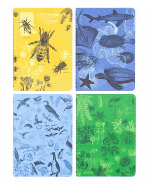 Research Series Life Science Pocket Notebooks Set of 4 designs include: 1 Bees, 1 Marine Biology, 1 Birds and 1 Botany