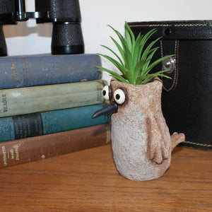 Sandpiper Planter side view showing cute little tail displayed with succulent in it