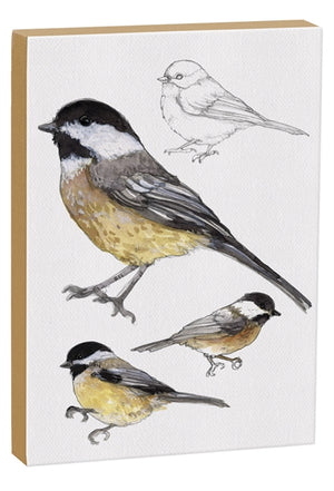 Carolina Chickadee 5x7 inch Canvas displaying sketched & colorfully illustrated Chickadees