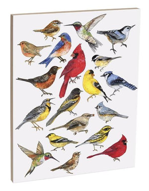 Bird Study 16x20 inch Canvas displaying sketched & colorfully illustrated birds