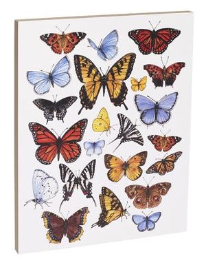 Butterfly Study 16x20 inch Canvas displaying sketched & colorfully illustrated butterflies