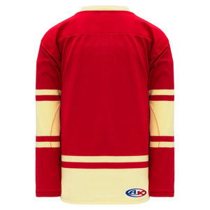 H550B-ALL732B NHL All-Star Blank Hockey Jerseys
