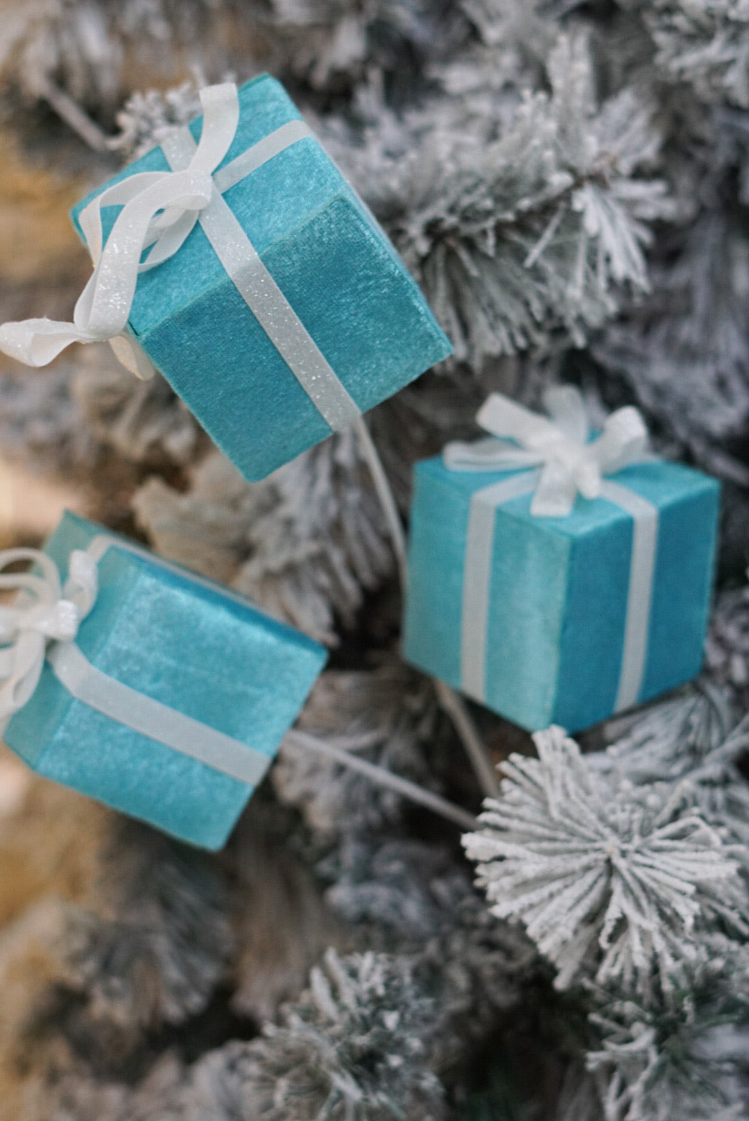 Tiffany Blue Box Sprig