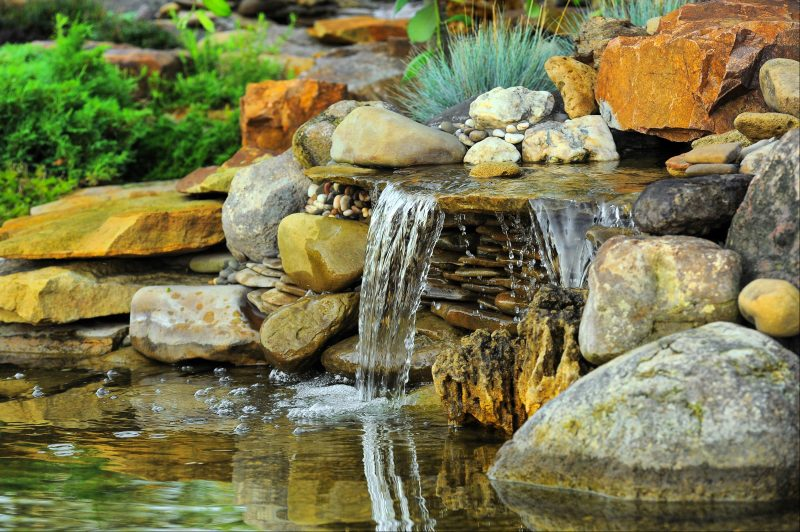 Spring Pond maintenance - Get ready for the season