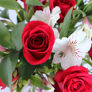 Dozen Red Rose Centerpiece