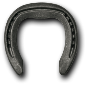 Steel Horseshoes