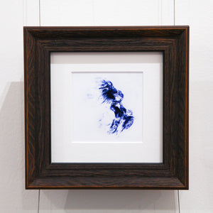 Feathered Body In Flight - Framed Print