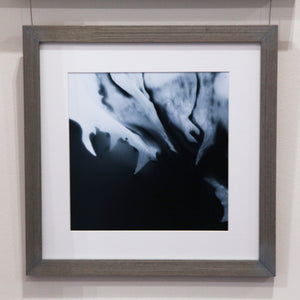 Tip Of The Iceberg - Framed Print