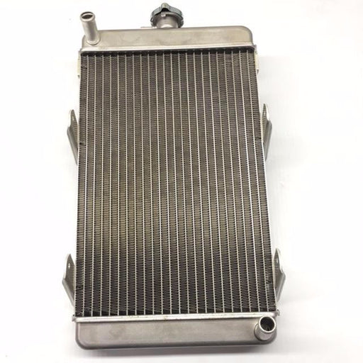 Radiator X125T - Italian Motors USA LLC