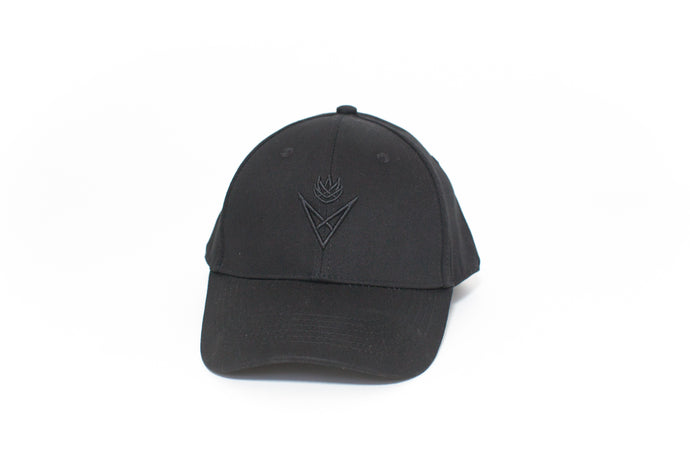 Black Logo Baseball Hat