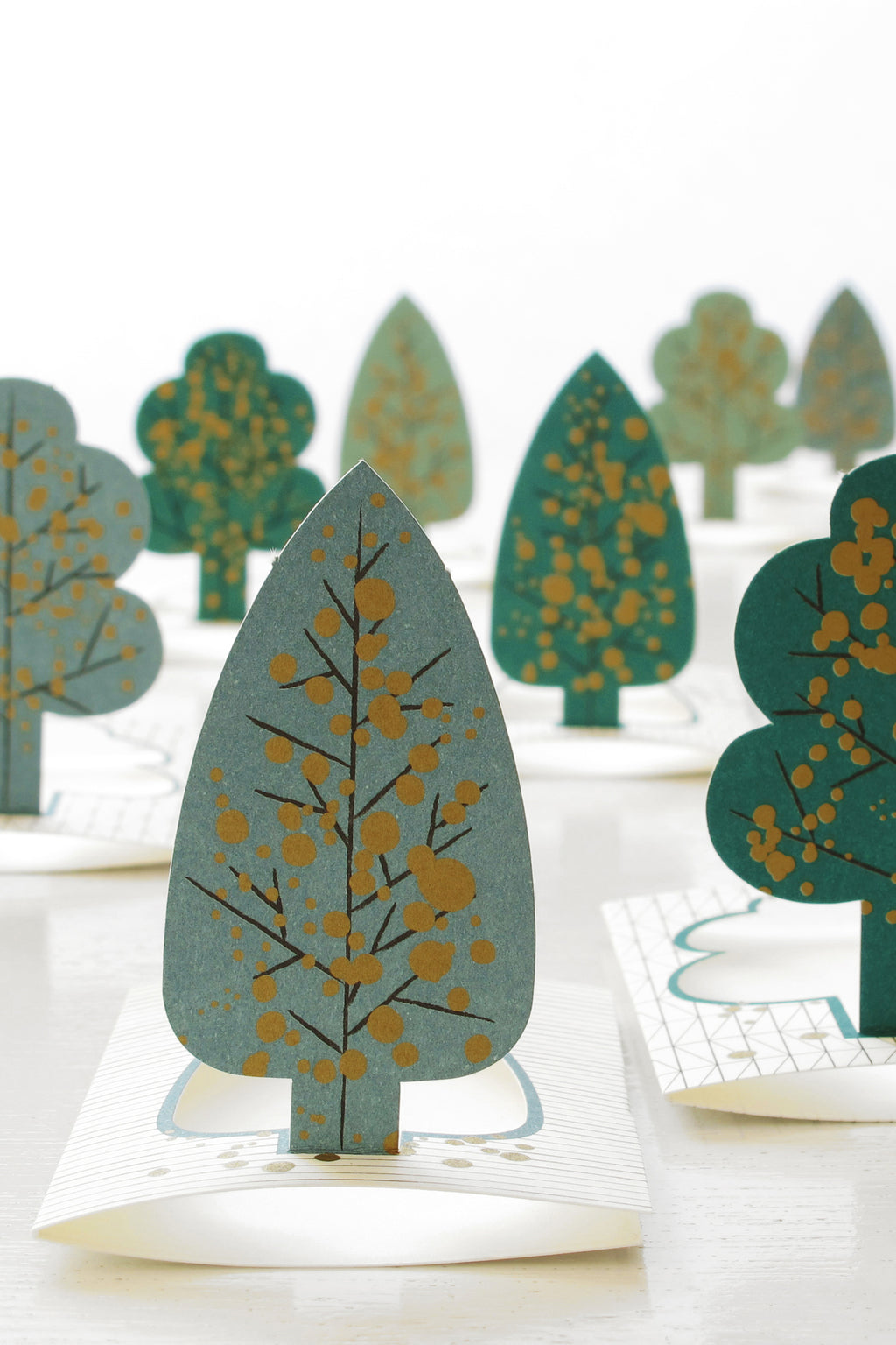 FOREST pop-up gift card sets