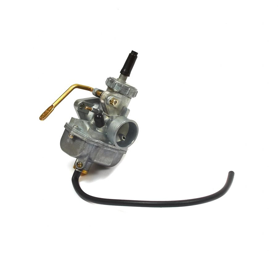 Carburetor Assembly (BS555658)