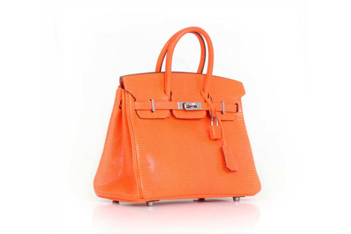HERMÈS Birkin 25 Orange Lizard handbag sold by Pepa Lamarca