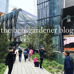 Ben Busko on Living on New York CIty's High Line Park
