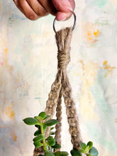 Load image into Gallery viewer, Macramé Plant Hanger (Coconut)