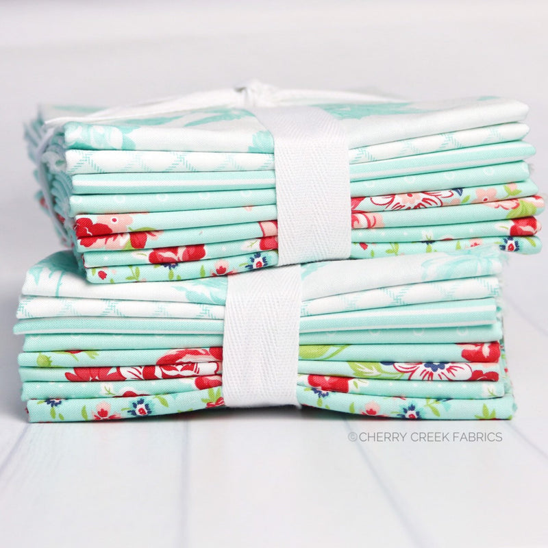 Smitten Aqua Half Yard Fabric Bundle from Smitten Collection at Cherry Creek Fabric