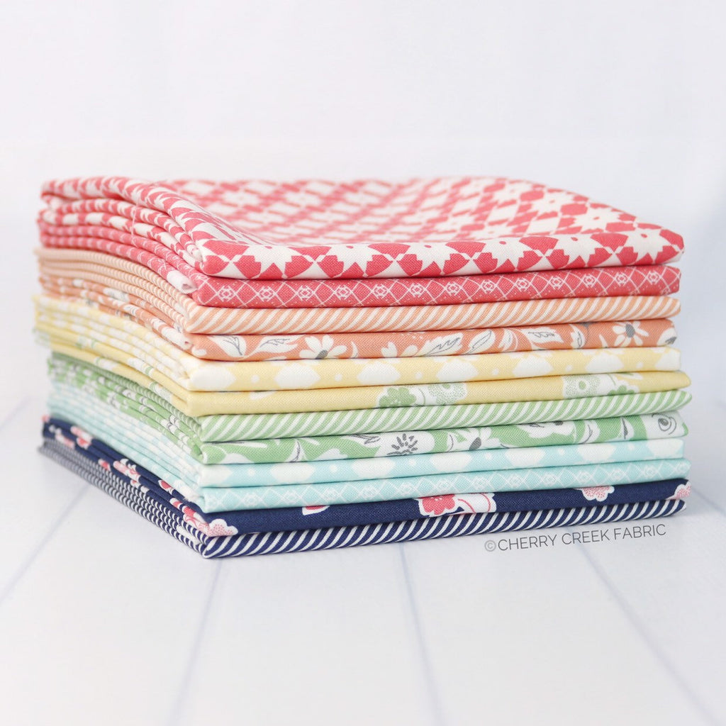 Garden Variety Rainbow Half Yard Bundle Fabric - 12 pieces