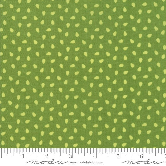 Green Seeds Fabric from All Weather Friend Collection at Cherry Creek Fabric