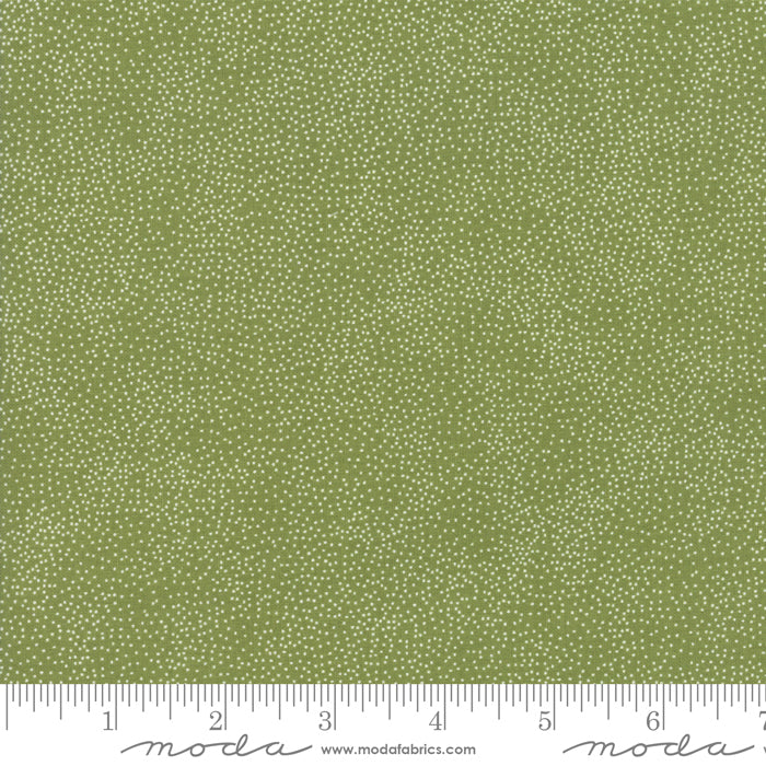 Merry Starts Here by Sweetwater | Green Starry Night Fabric