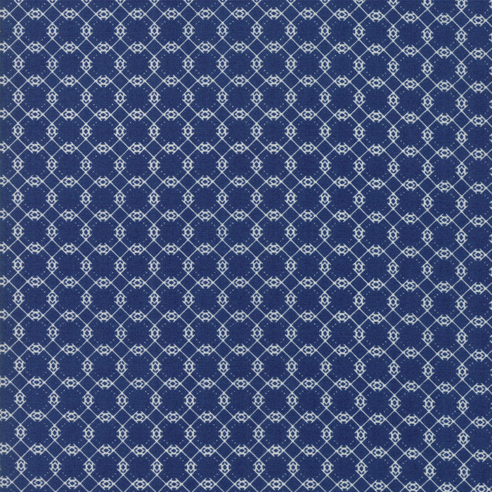 Navy Brambles Fabric from Garden Variety Collection at Cherry Creek Fabric